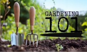 Join Us At The Floral U0026 Hardy   Gardening 101